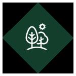 Eco_Committee