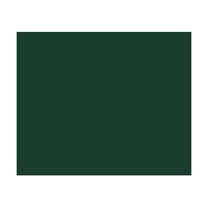 Wellington Twitter